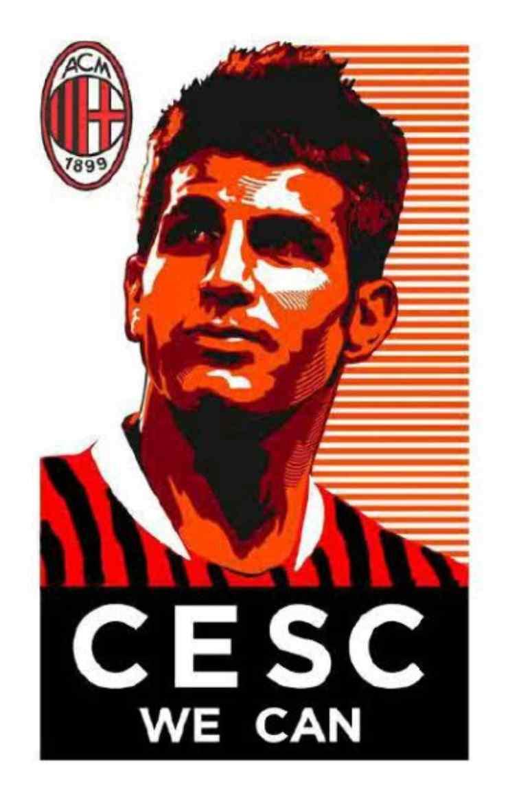 Fabregas Cesc we can